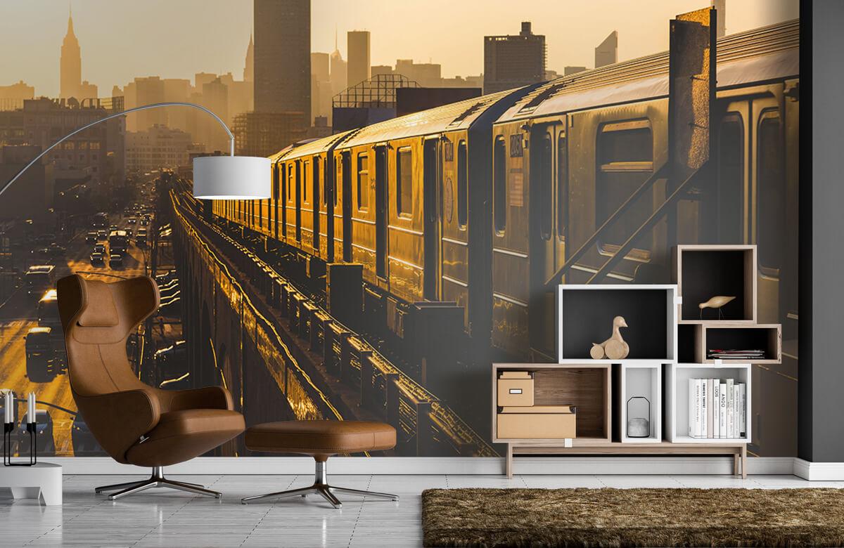 Transport Trein in New York 5