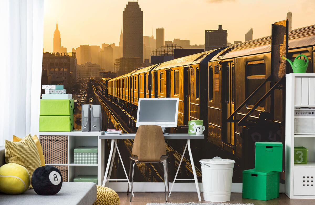 Transport Trein in New York 9