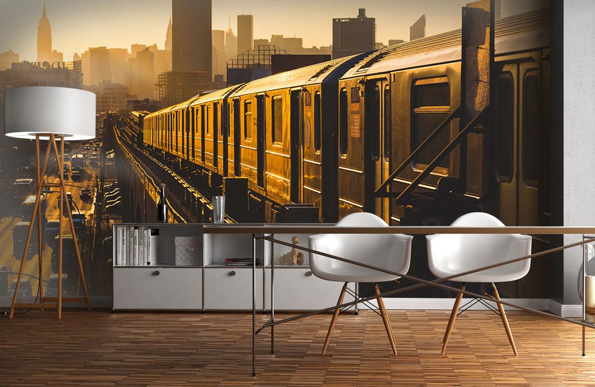 Transport Trein in New York 11