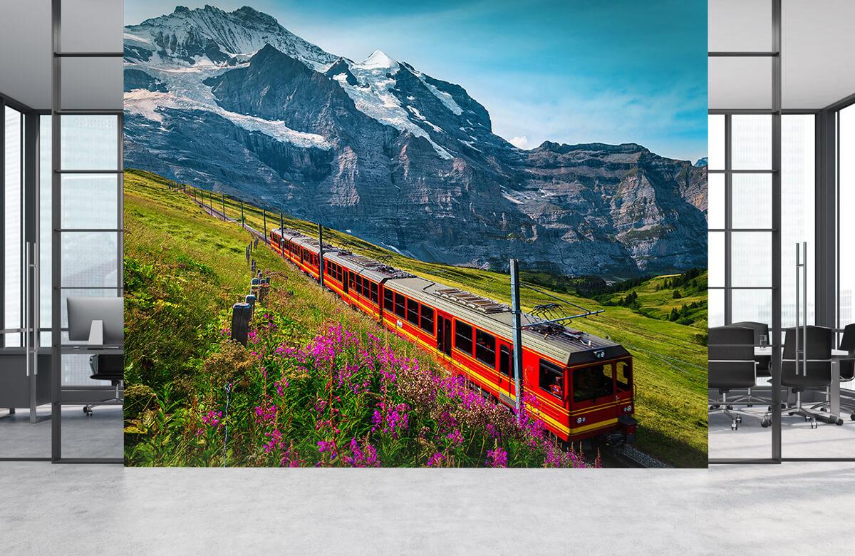 Transport Elektrische trein 4