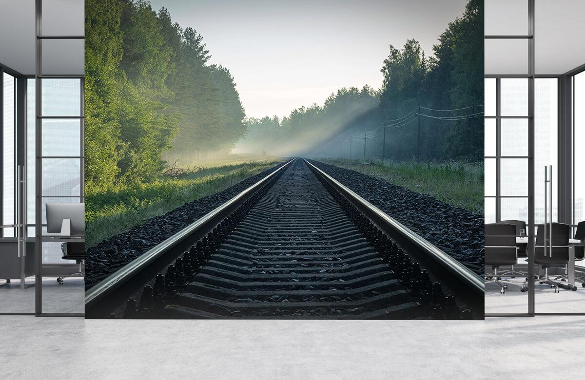 Transport Treinrails door het bos 3