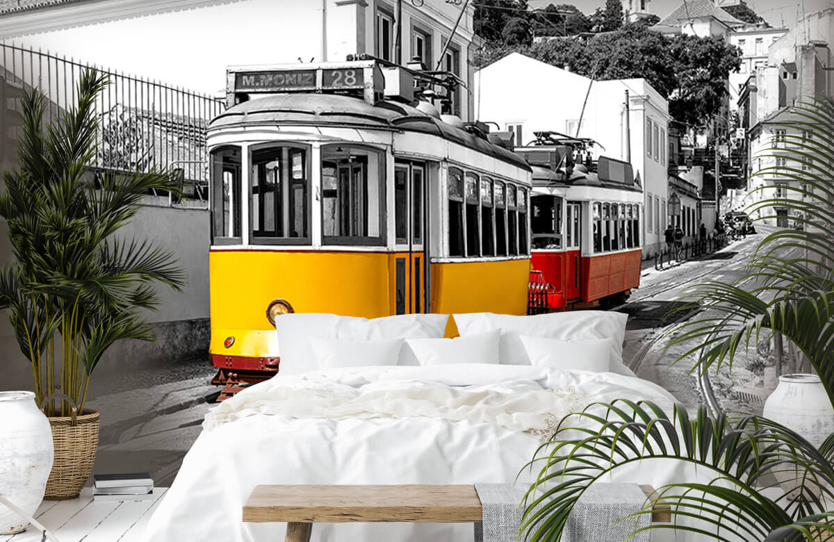 Transport Gele en rode tram 6
