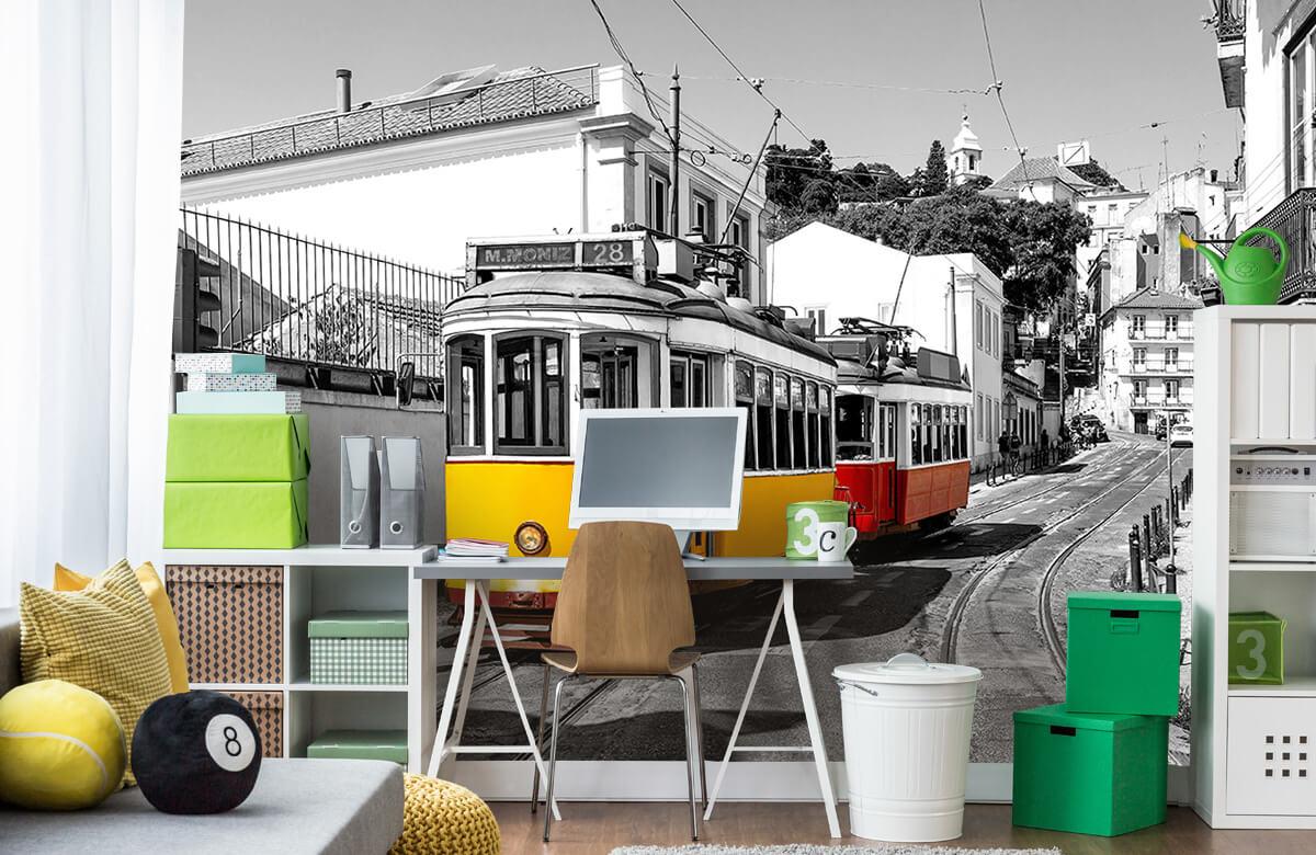 Transport Gele en rode tram 9
