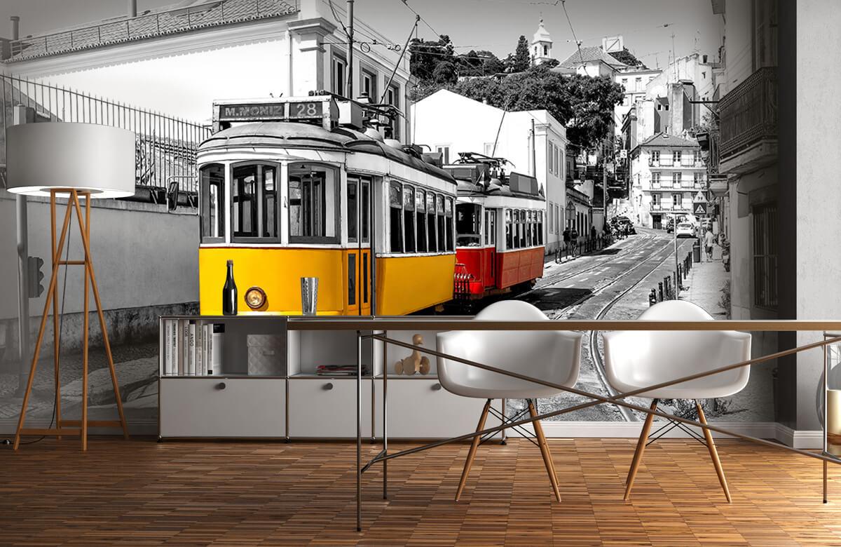 Transport Gele en rode tram 11