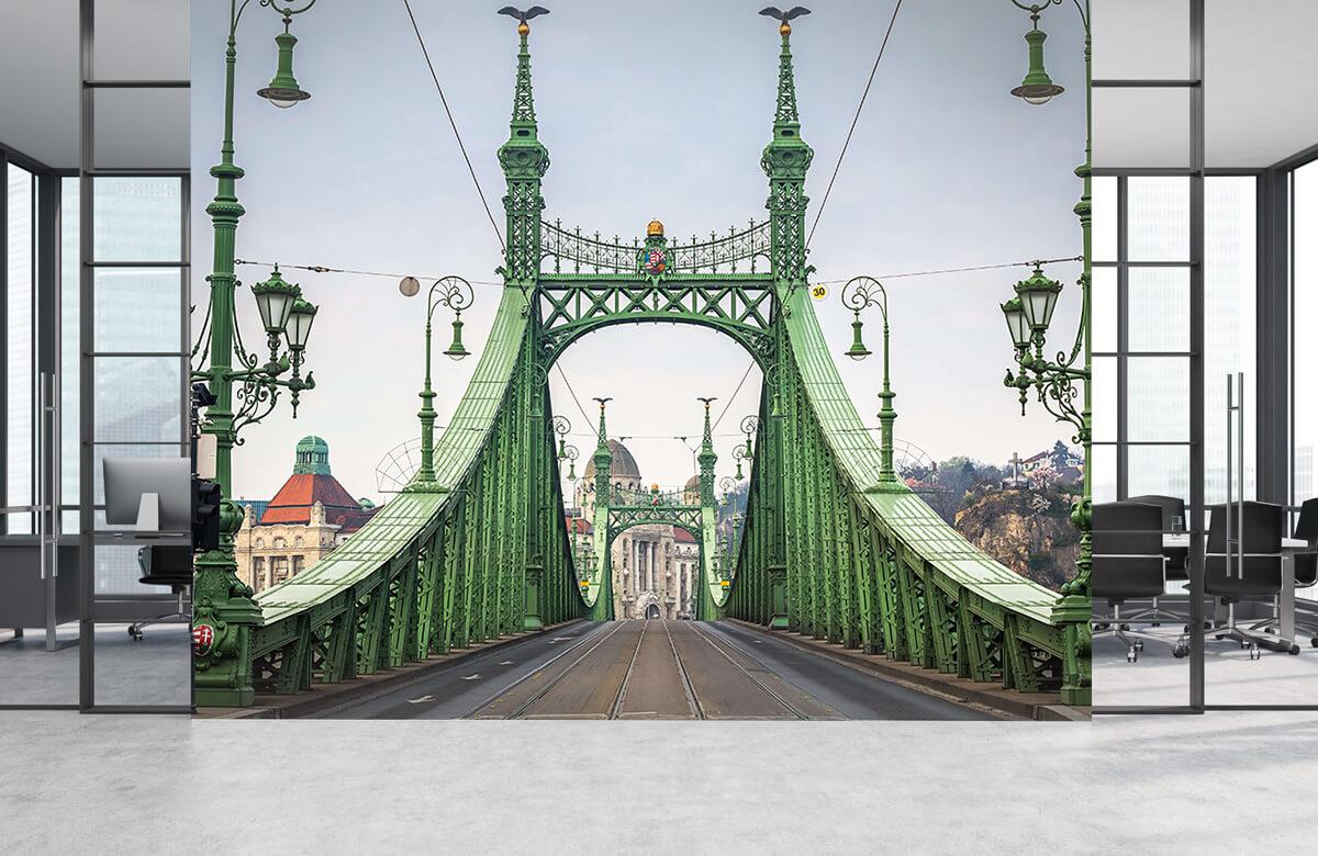 Transport Tramlijn in Budapest 4