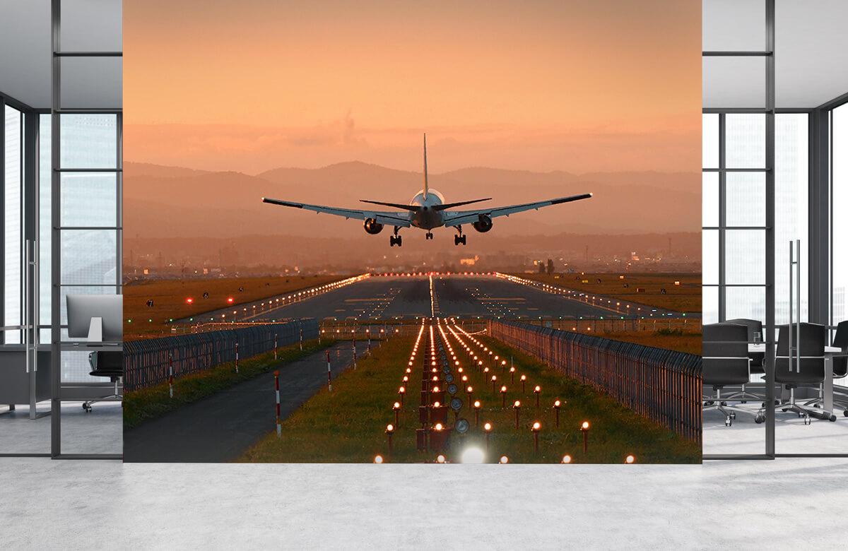 Transport Landend vliegtuig in de avondzon 4