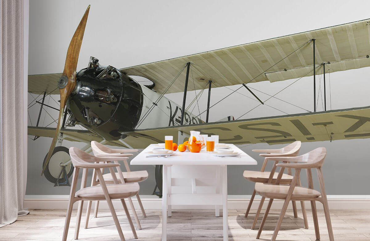 Transport Oud vliegtuig FK 23 Bantam 2