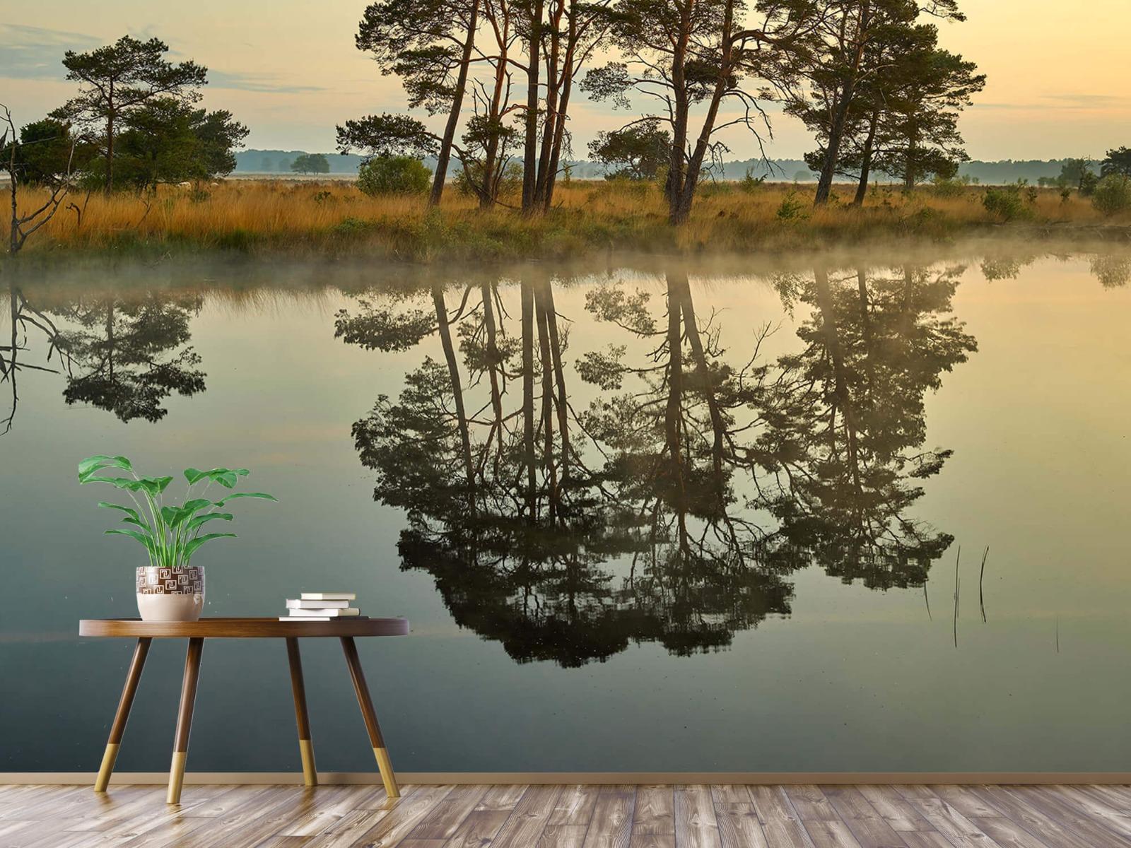 Natuur - Reflectie in bosven 6