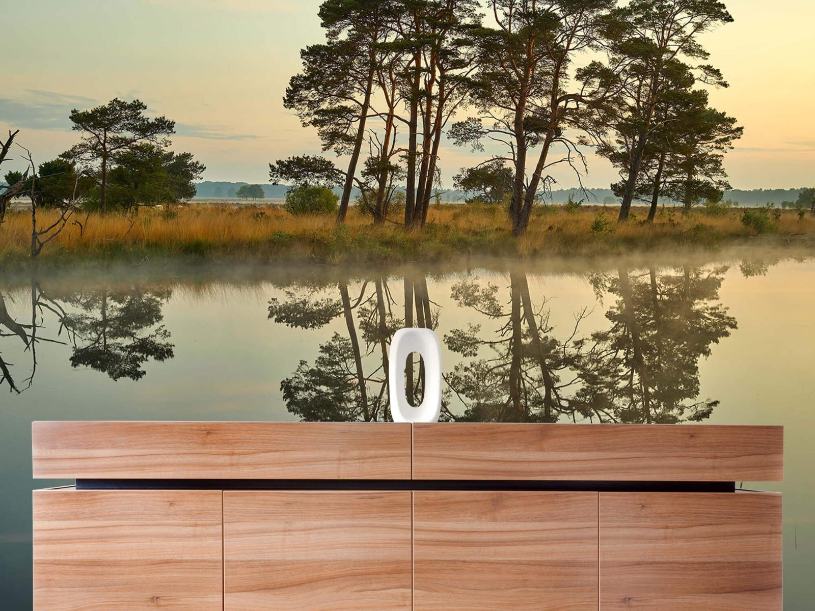 Natuur - Reflectie in bosven 20