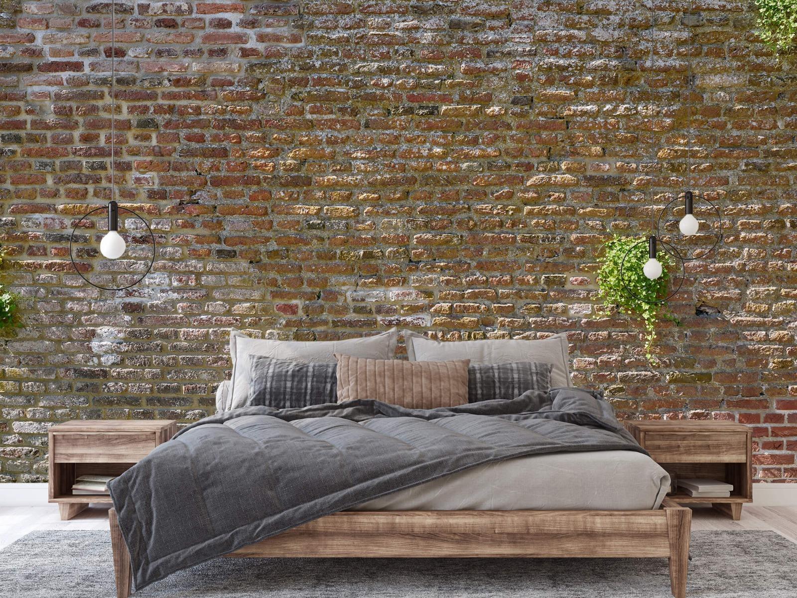 Stenen - Oude stenen stadsmuur met plantjes 3