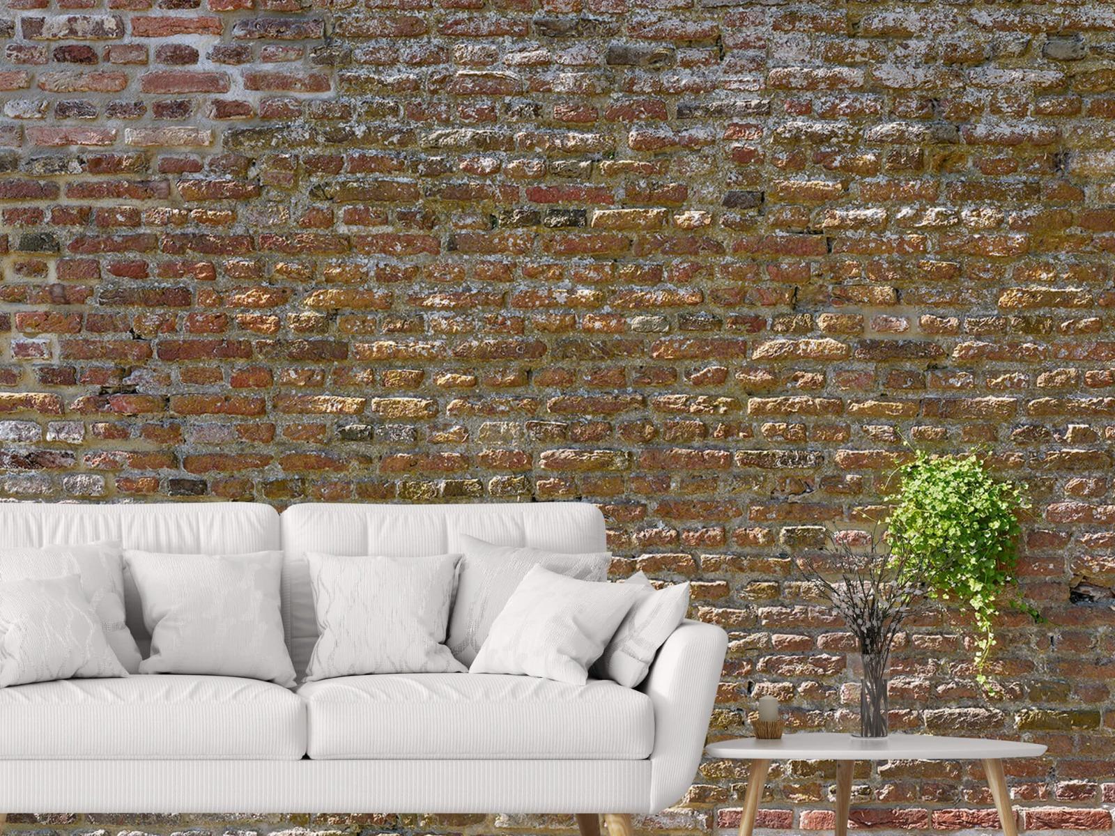 Stenen - Oude stenen stadsmuur met plantjes 4