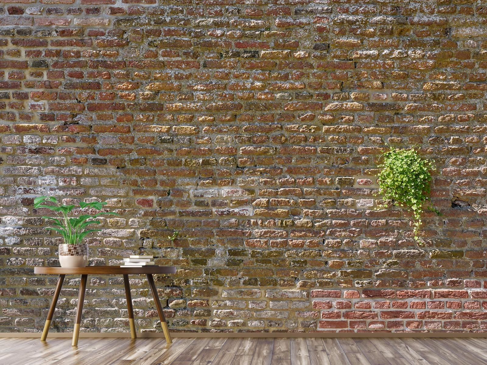 Stenen - Oude stenen stadsmuur met plantjes 5
