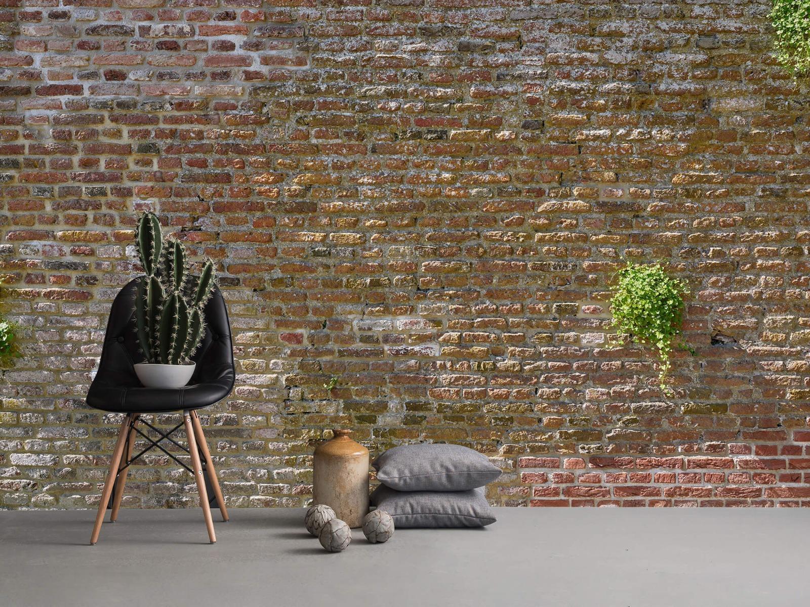 Stenen - Oude stenen stadsmuur met plantjes 13