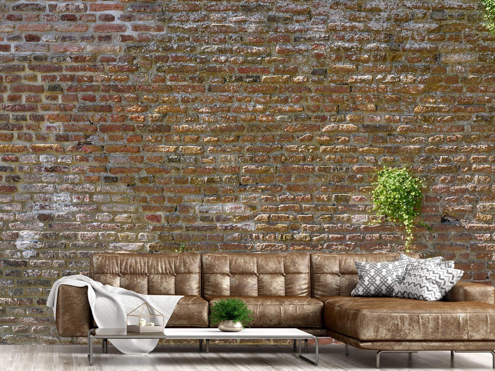 Stenen - Oude stenen stadsmuur met plantjes 14