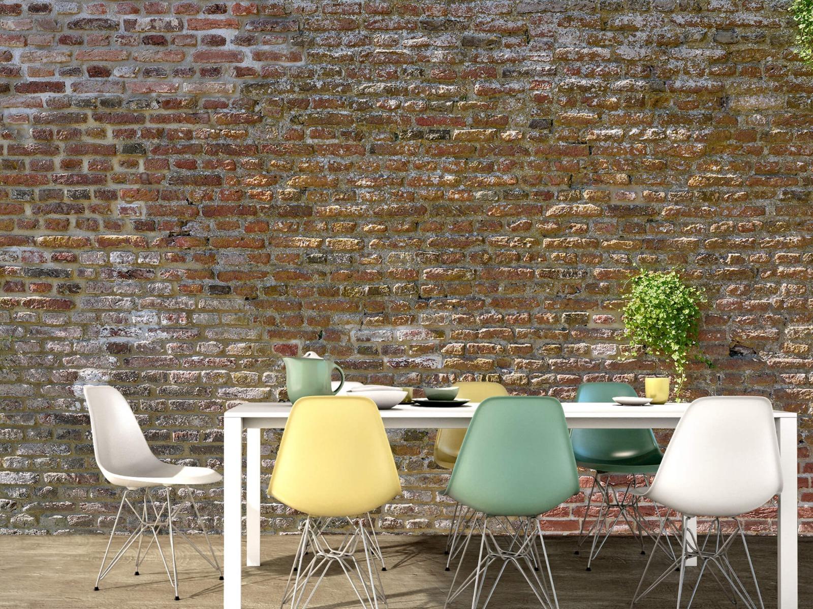 Stenen - Oude stenen stadsmuur met plantjes 15