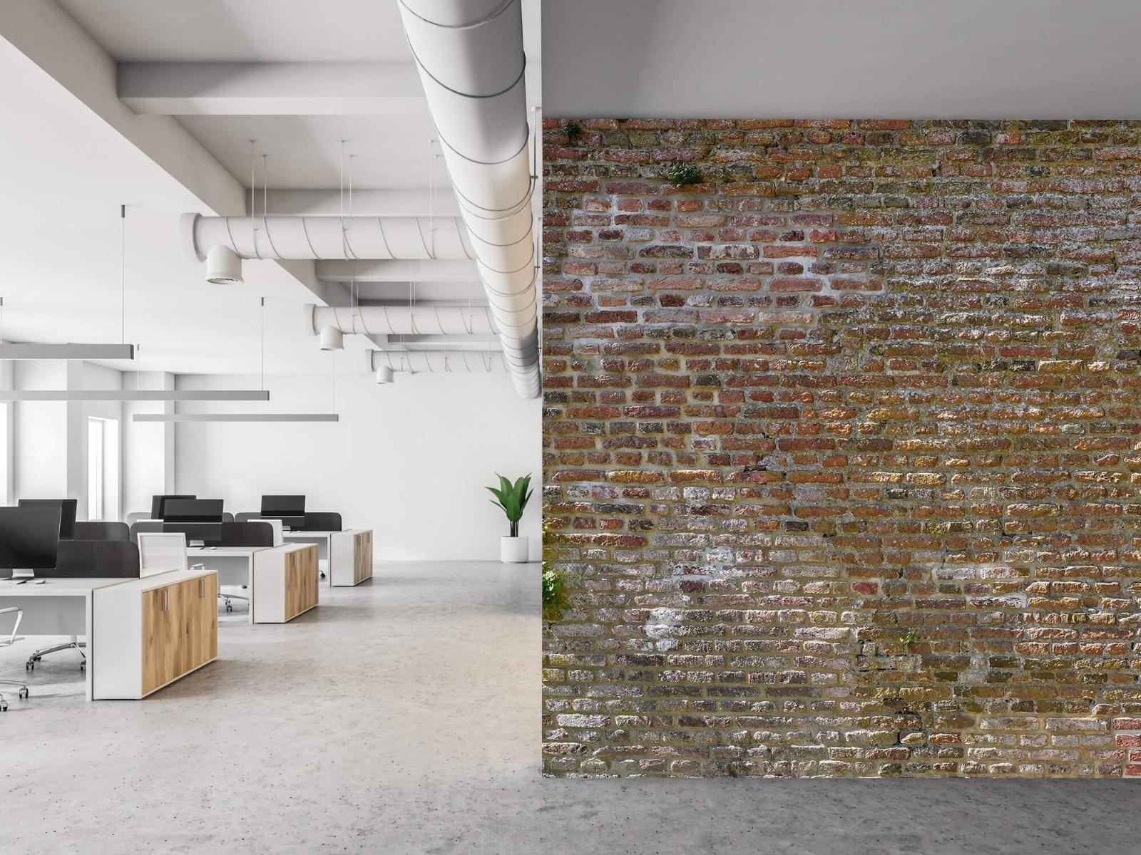 Stenen - Oude stenen stadsmuur met plantjes 21
