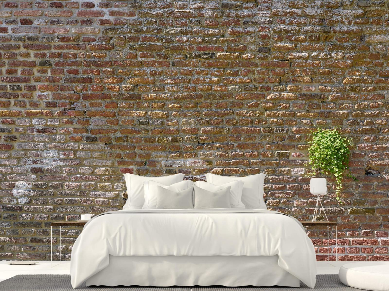 Stenen - Oude stenen stadsmuur met plantjes 23