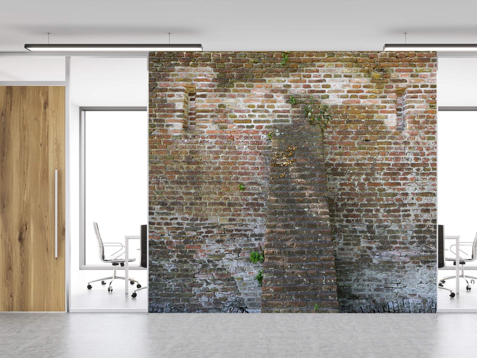 Stenen - Verweerde stadsmuur 11