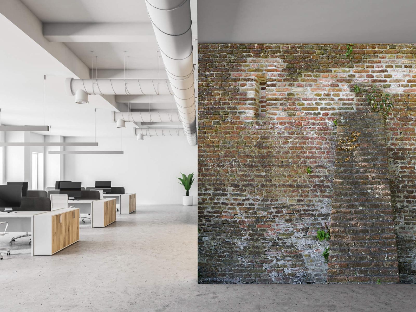 Stenen - Verweerde stadsmuur 21