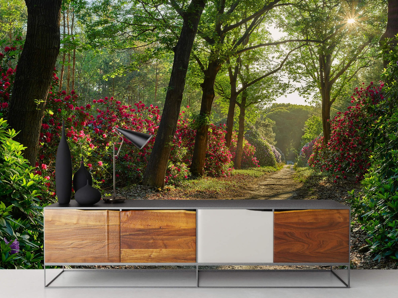 Bos - Zonsopkomst bij pad met rhododendrons 16