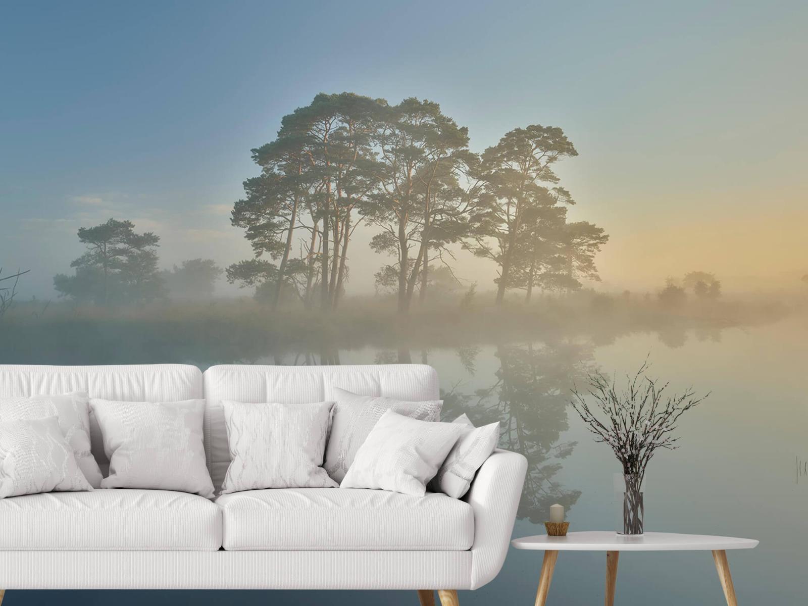 Natuur - Mist in heidegebied 5