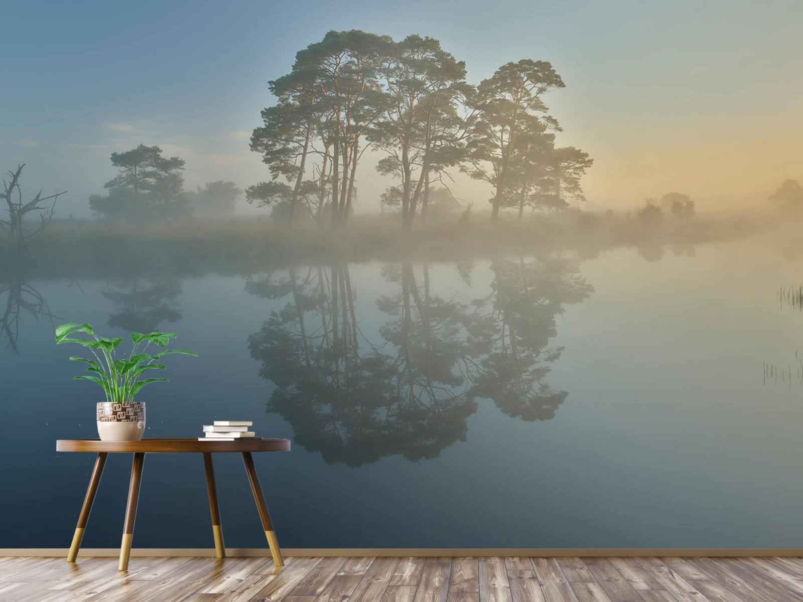Natuur - Mist in heidegebied 6