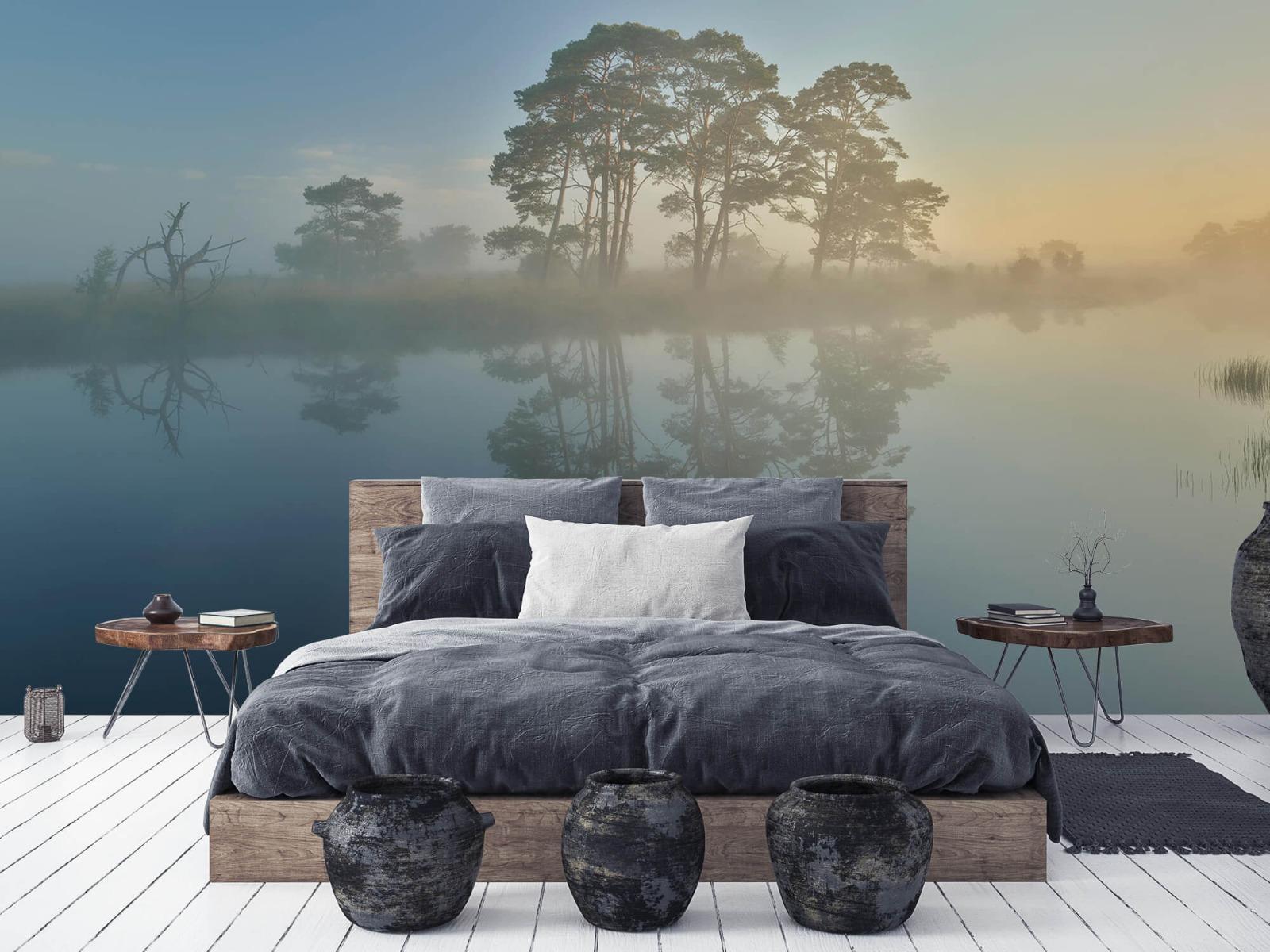 Natuur - Mist in heidegebied 8