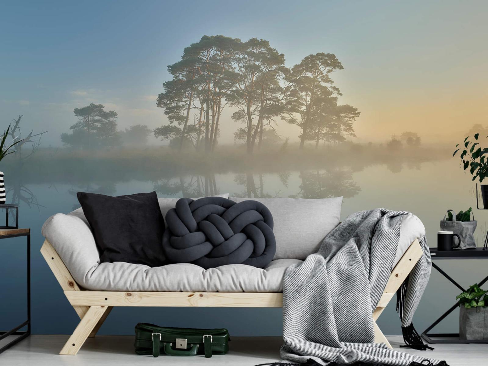 Natuur - Mist in heidegebied 1