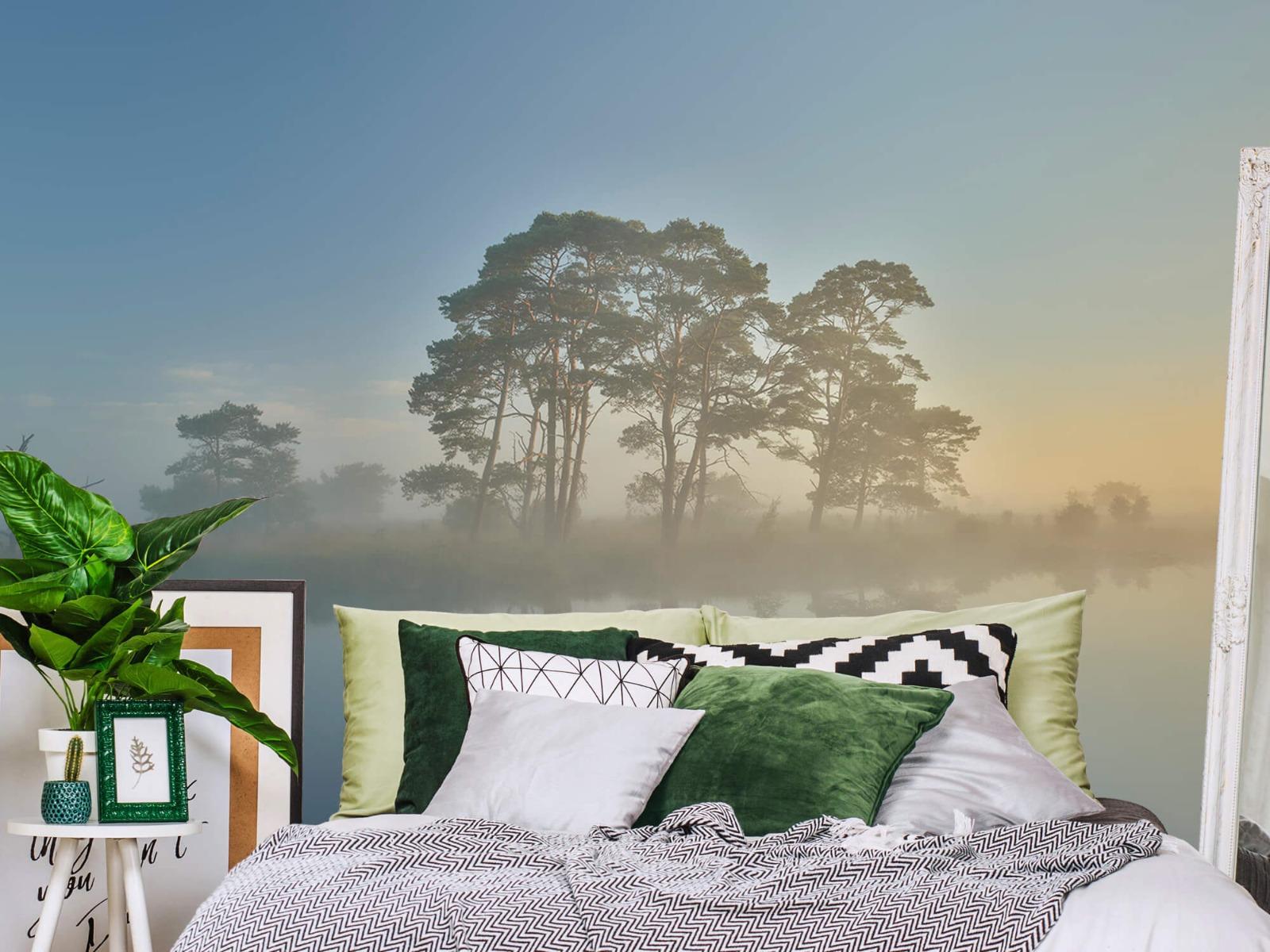 Natuur - Mist in heidegebied 2