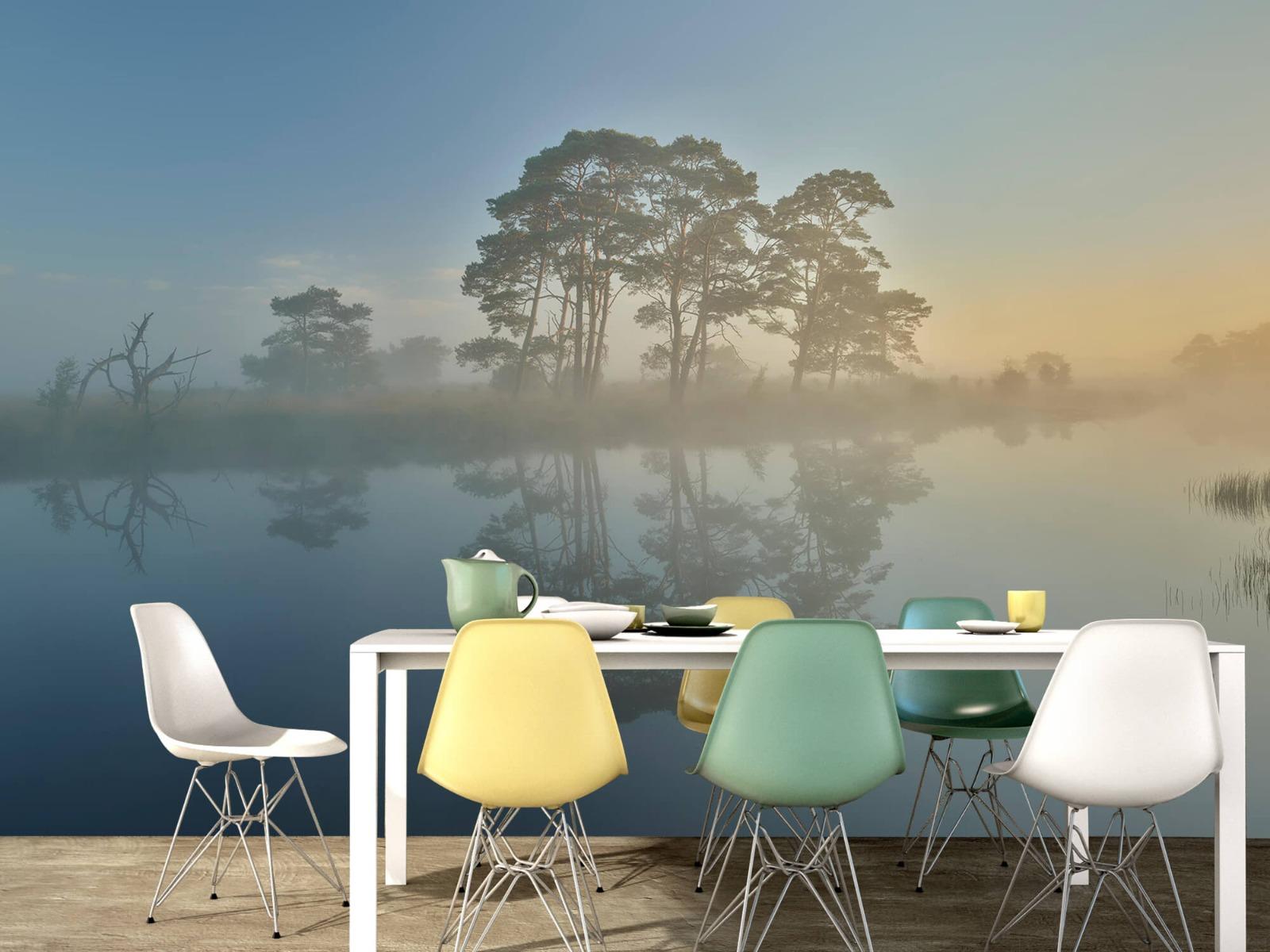Natuur - Mist in heidegebied 15
