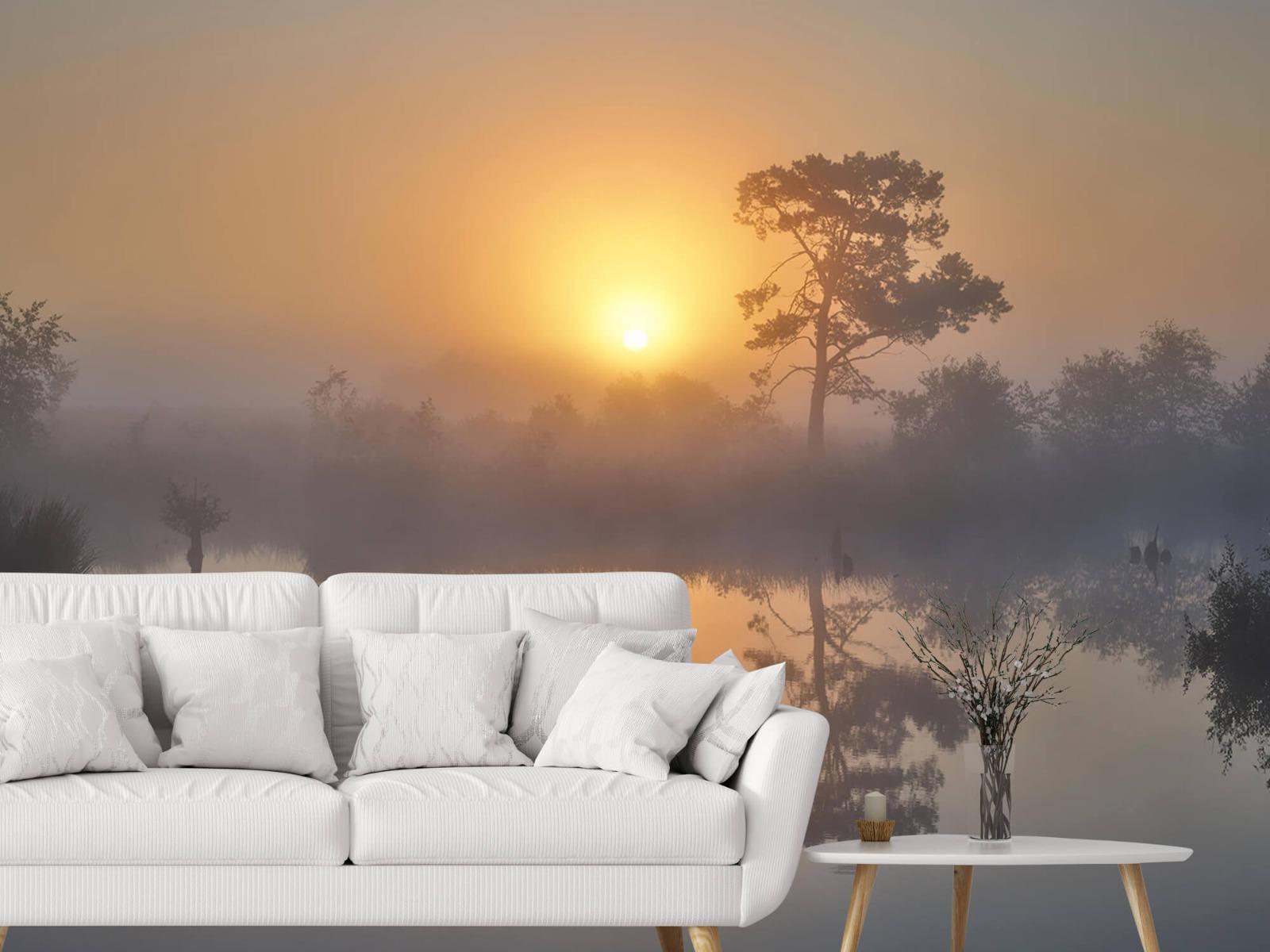 Natuur - Mistige zonsopkomst 4