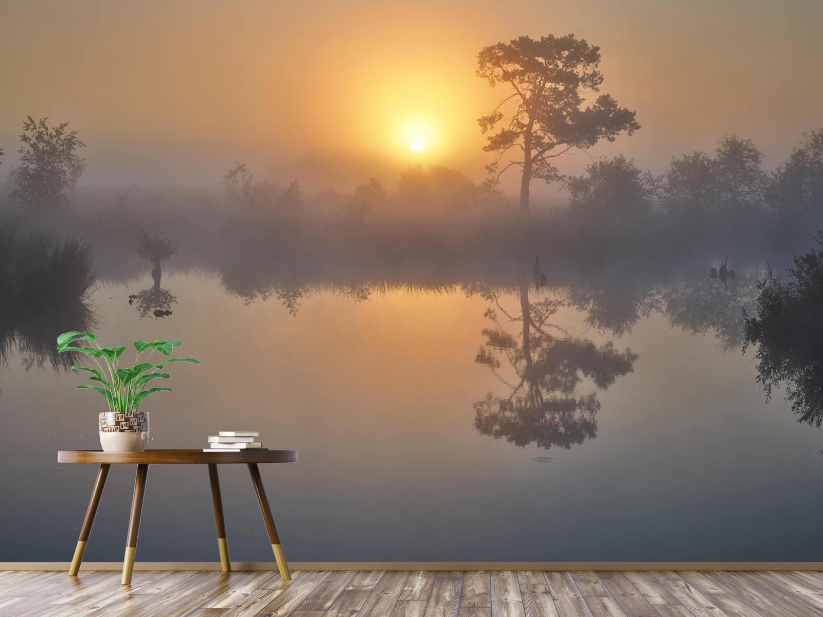 Natuur - Mistige zonsopkomst 5