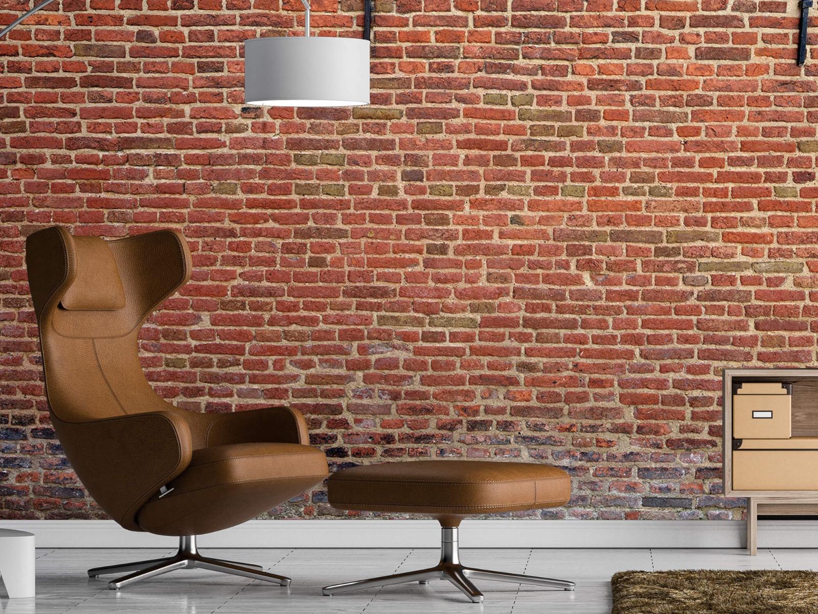 Stenen - Stadsmuur met muurankers 19