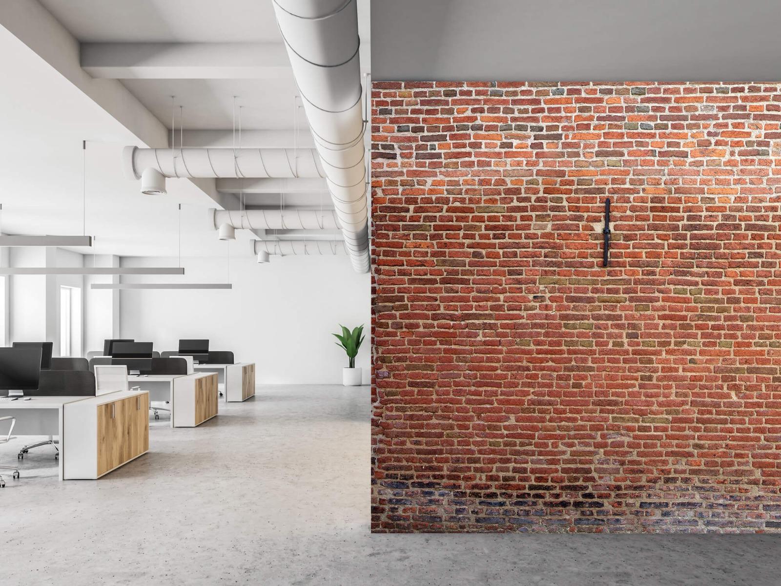 Stenen - Stadsmuur met muurankers 21