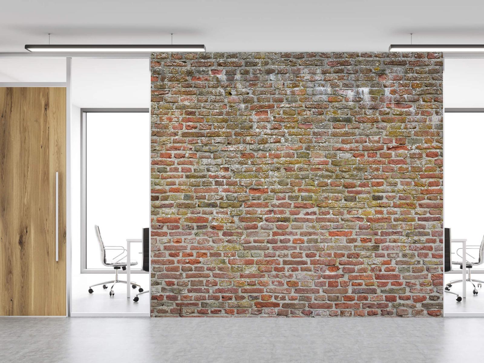 Stenen - Karakteristieke stadsmuur 11