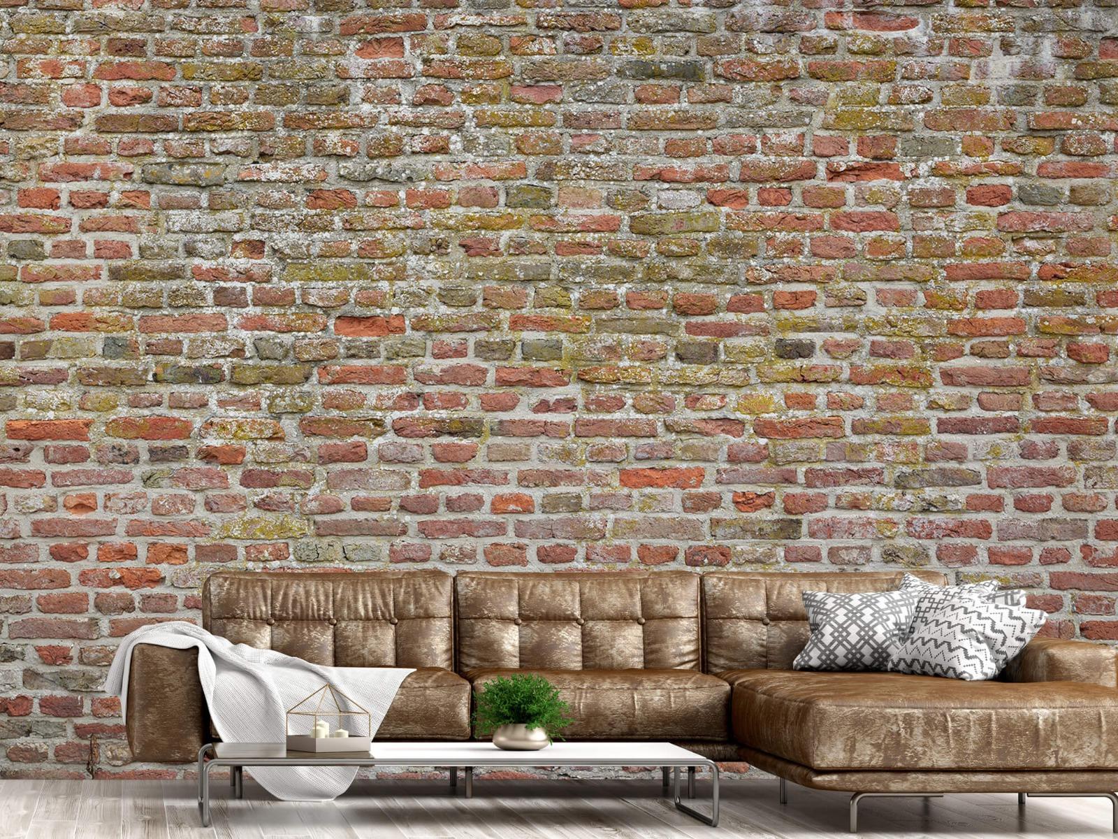 Stenen - Karakteristieke stadsmuur 14