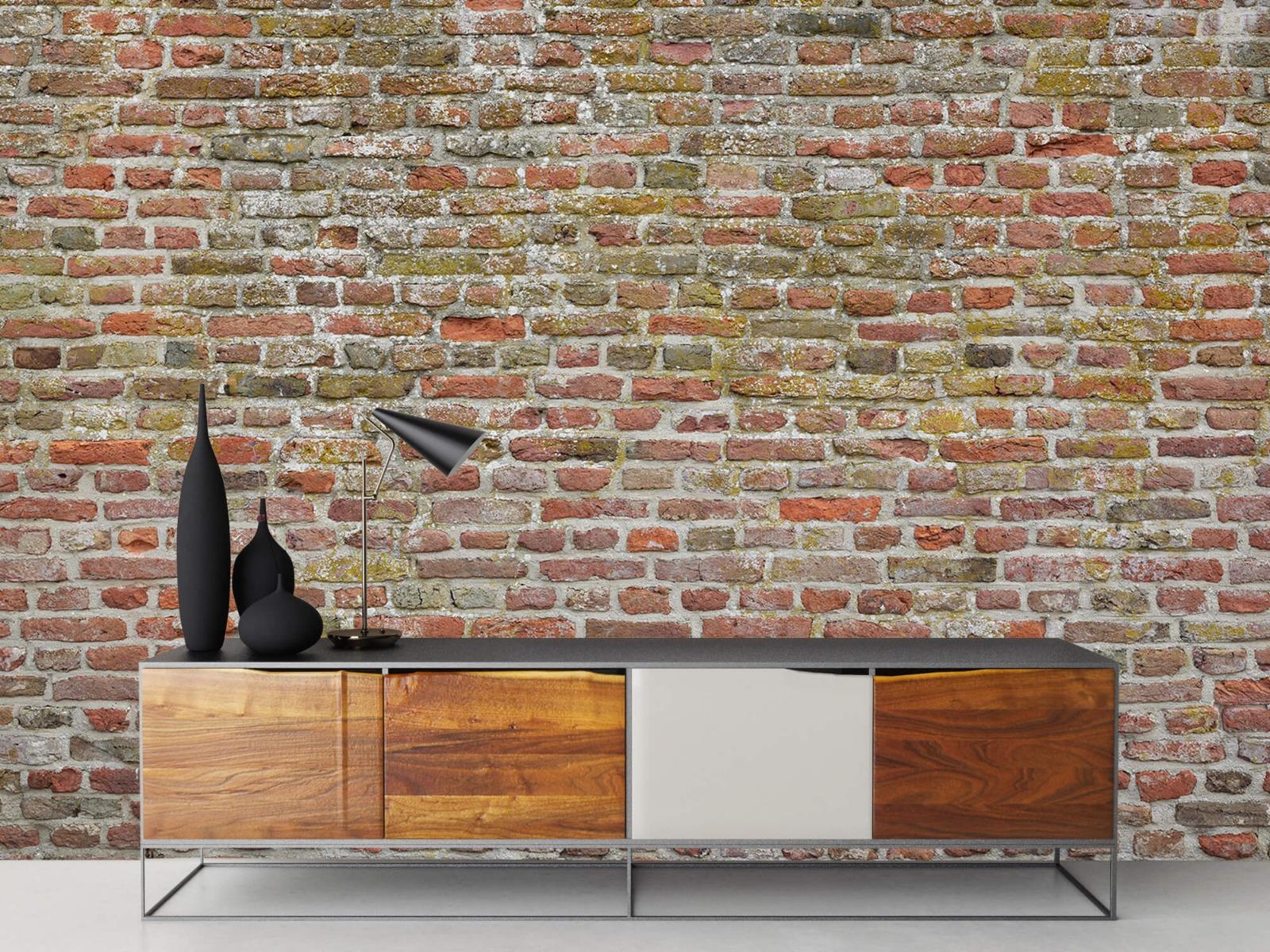 Stenen - Karakteristieke stadsmuur 16
