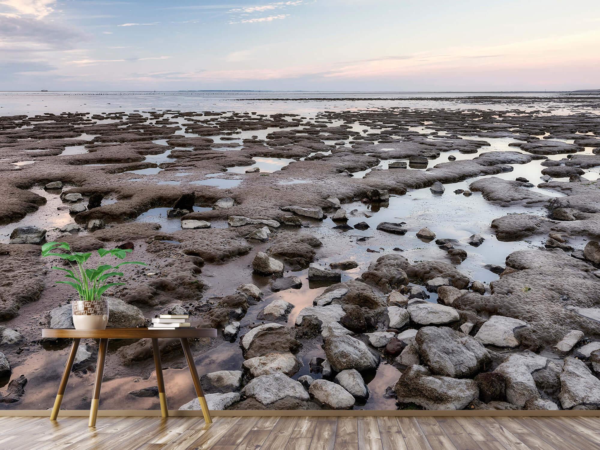 Strand - Stenen langs de kust 4