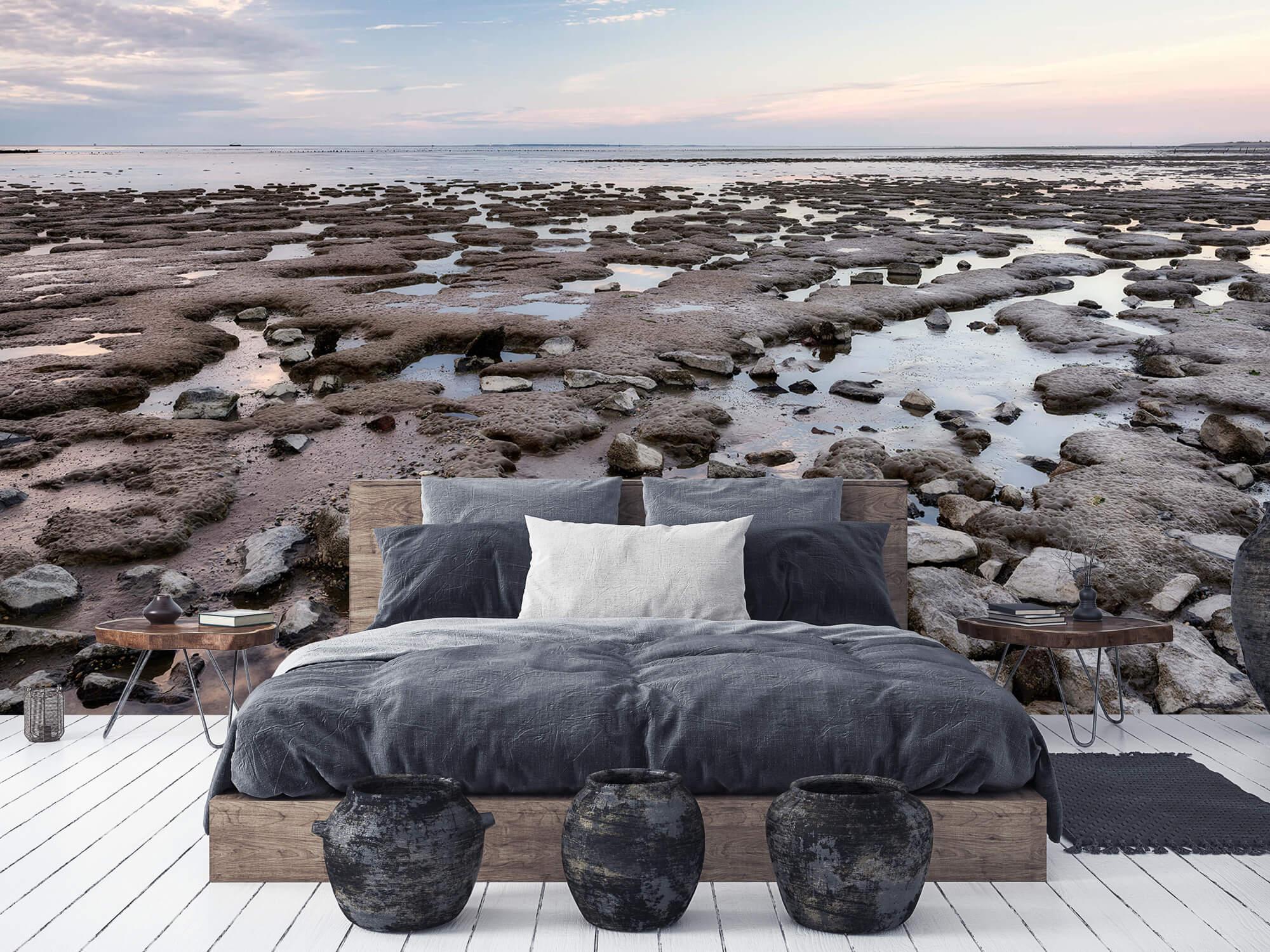 Strand - Stenen langs de kust 6