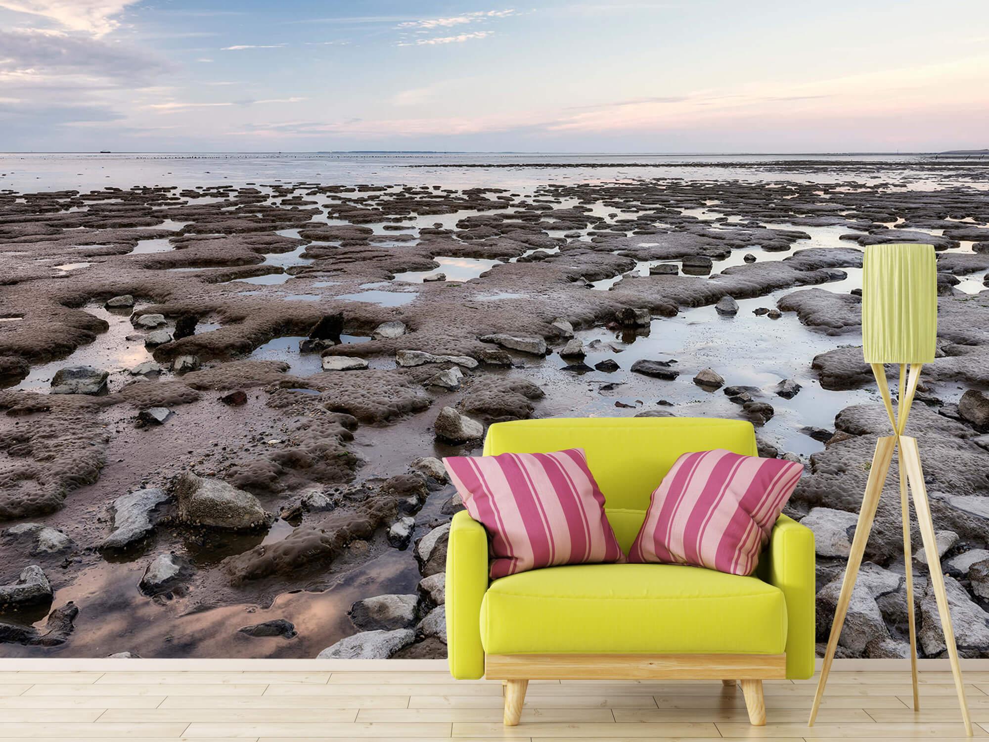 Strand - Stenen langs de kust 17