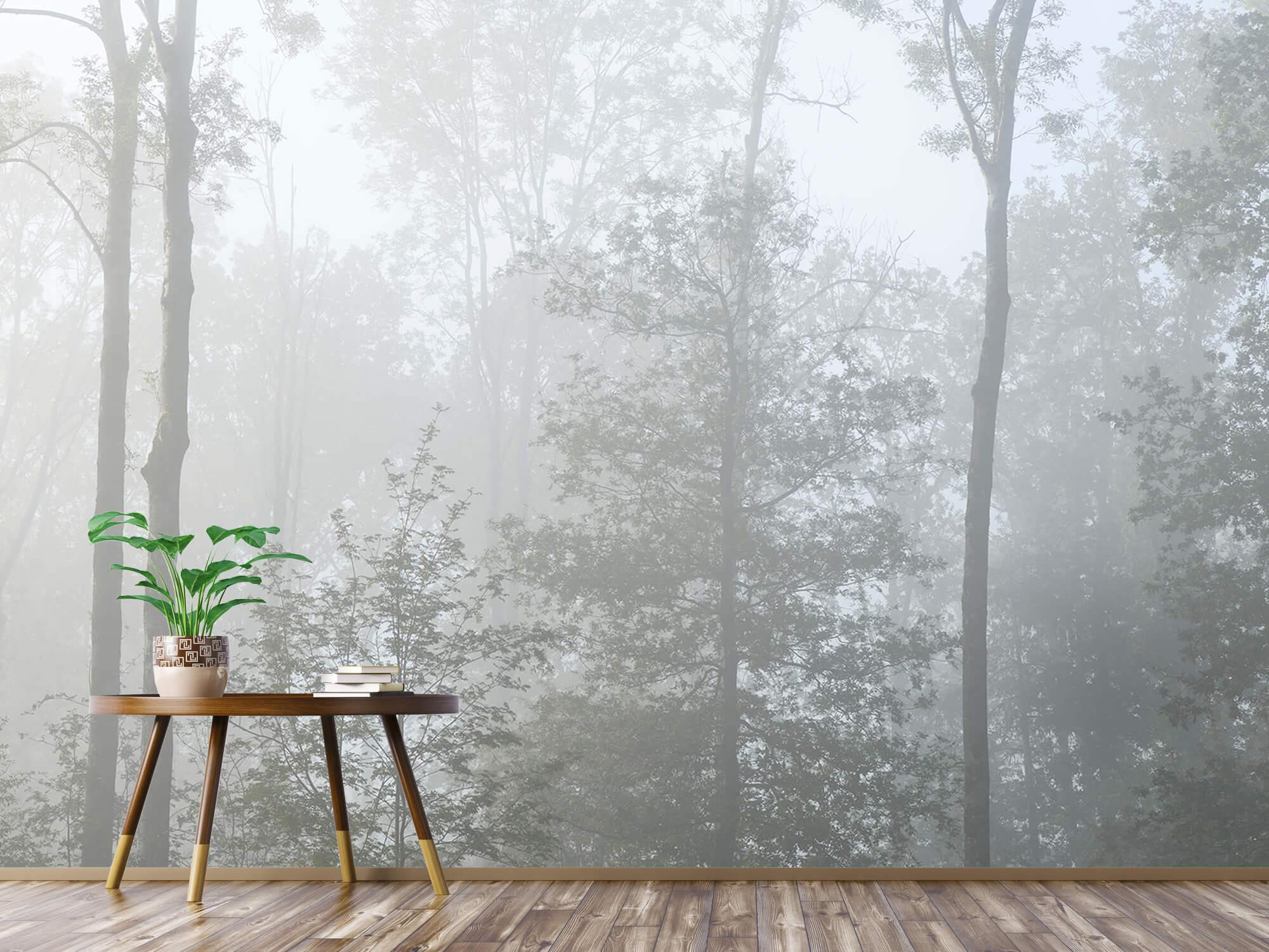 Bos behang Dichte mist in het bos 3