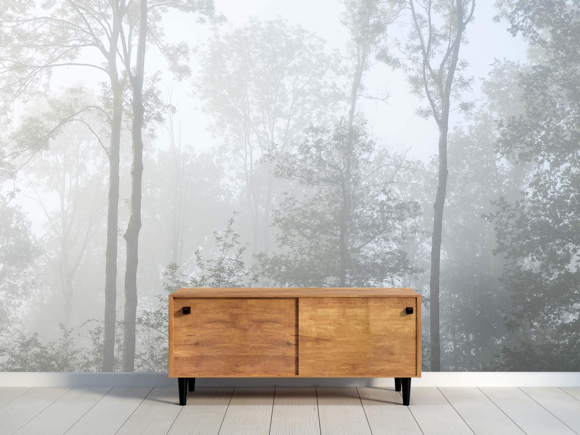 Bos behang Dichte mist in het bos 10