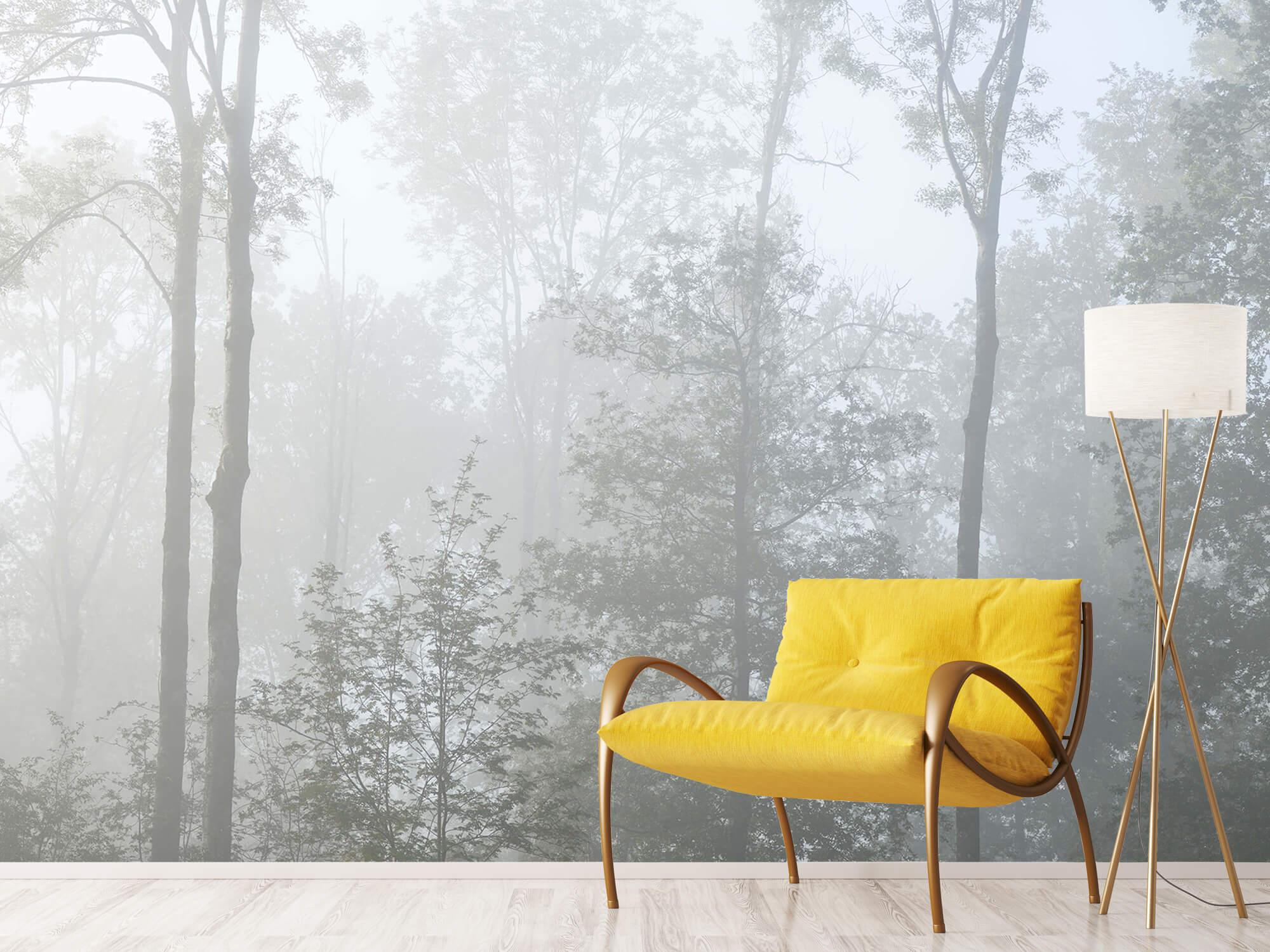 Bos behang Dichte mist in het bos 2