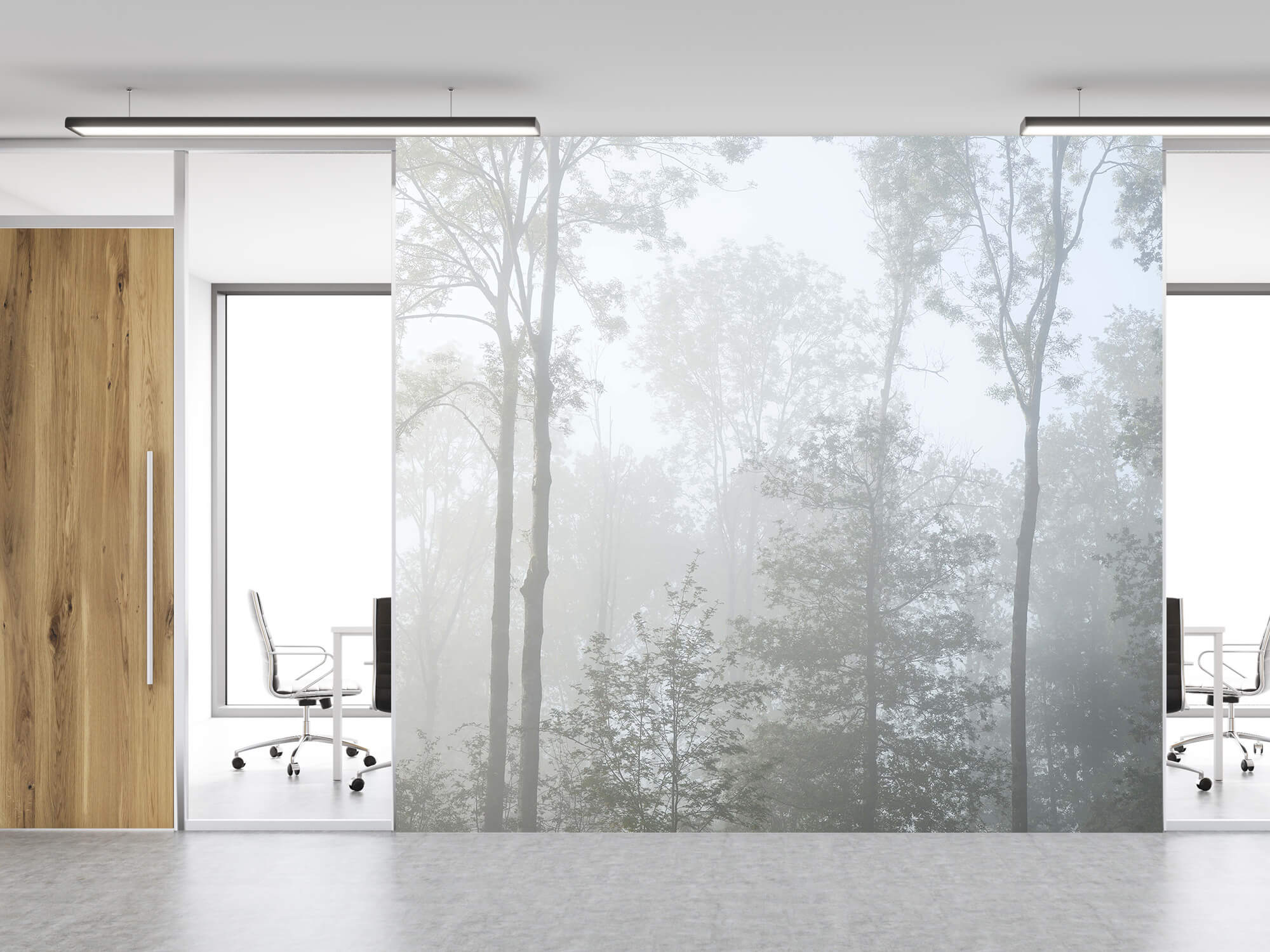 Bos behang Dichte mist in het bos 11