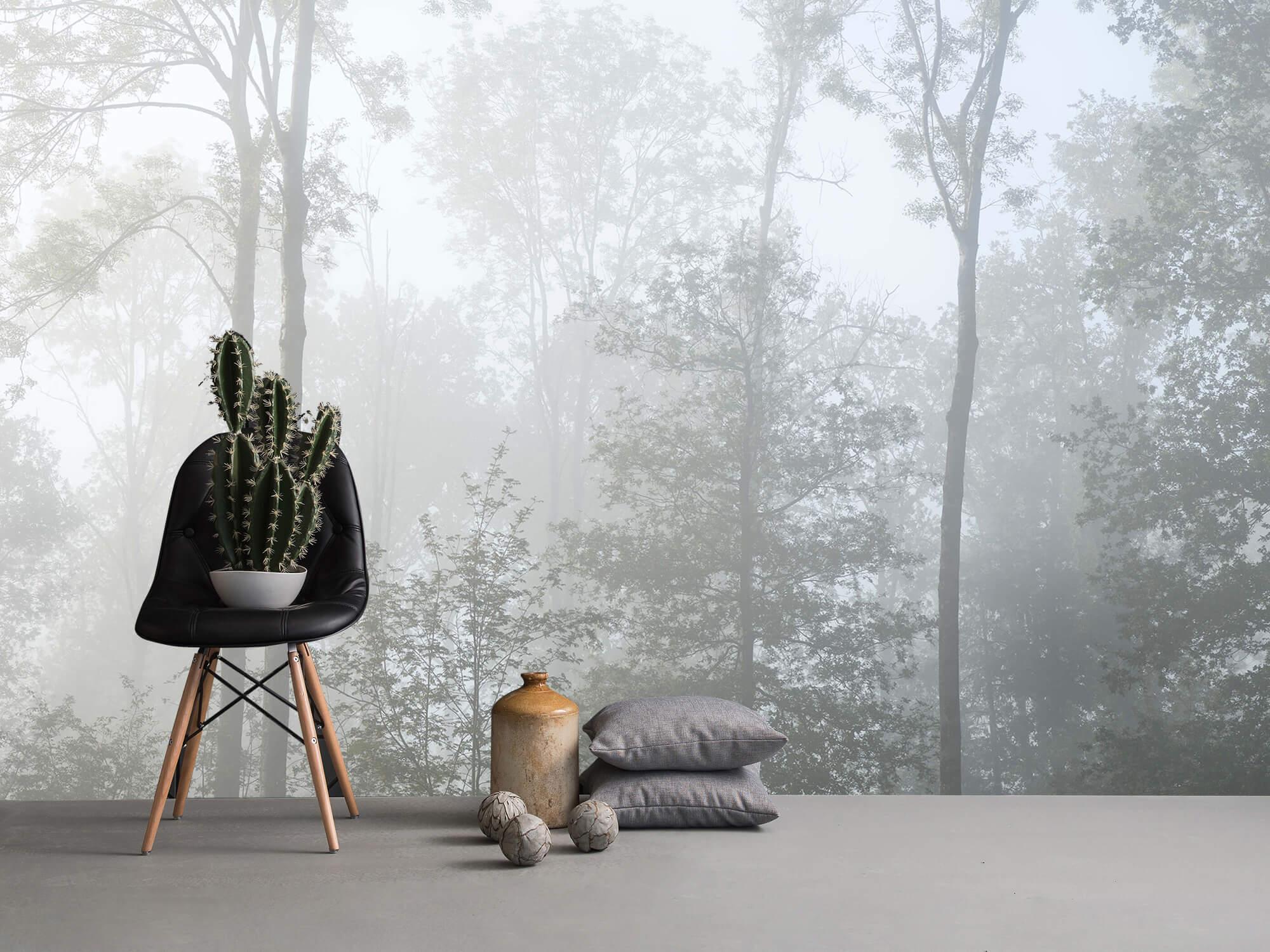 Bos behang Dichte mist in het bos 13