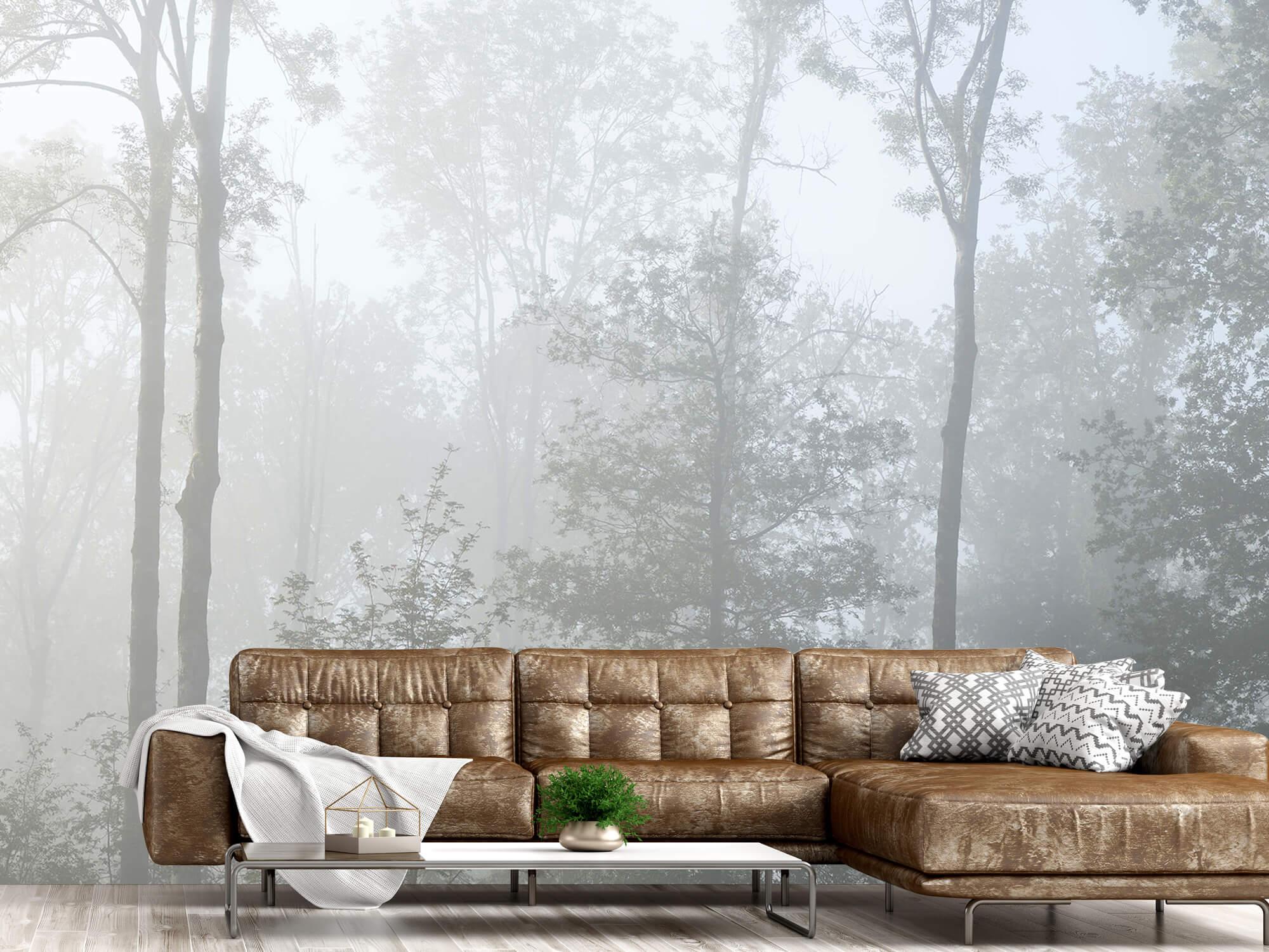 Bos behang Dichte mist in het bos 14