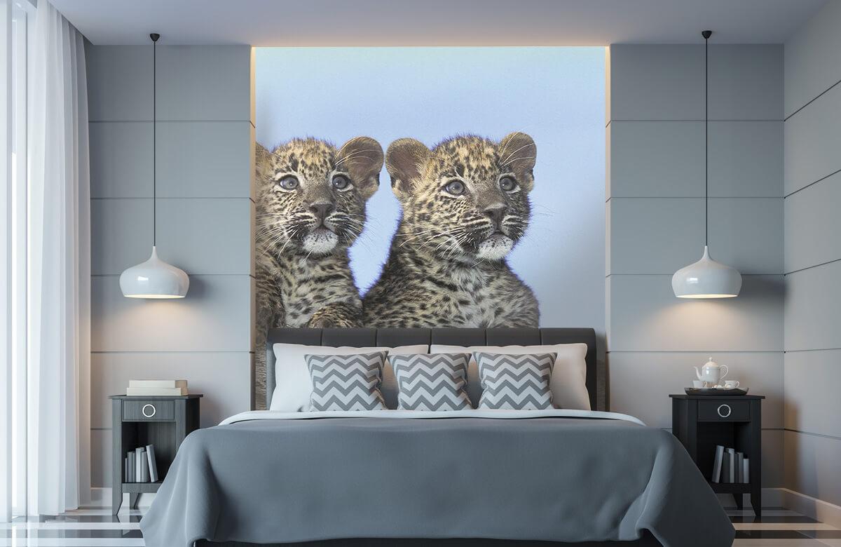 luipaarden Kleine luipaarden 8