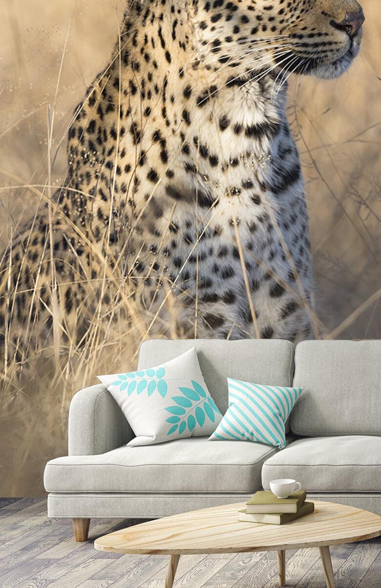 luipaarden Jagende luipaard 3