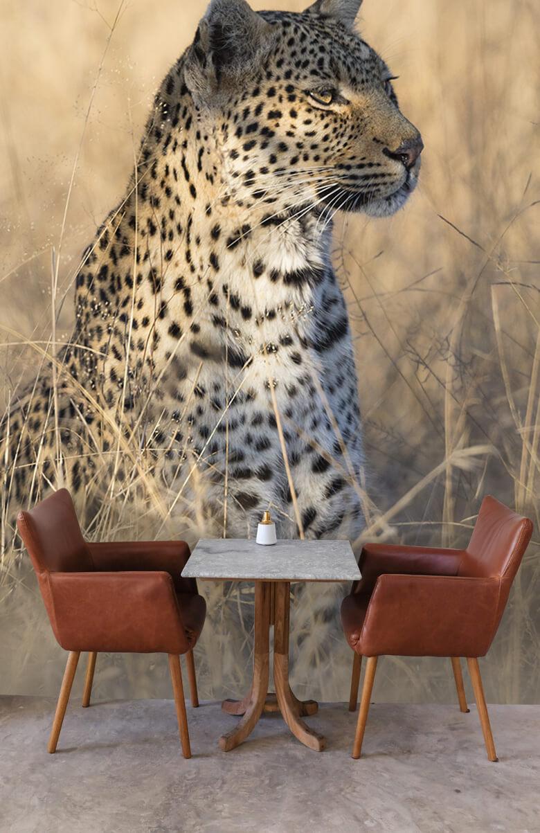 luipaarden Jagende luipaard 4
