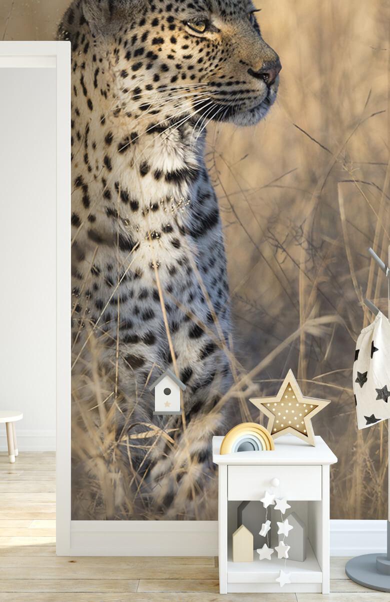 luipaarden Jagende luipaard 7